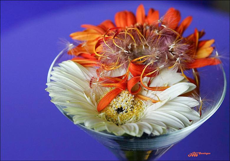 een bloemensorbet.................