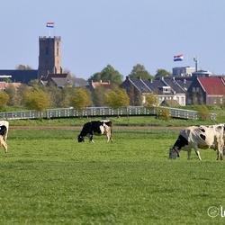 Uitzicht op Middelharnis/Sommelsdijk