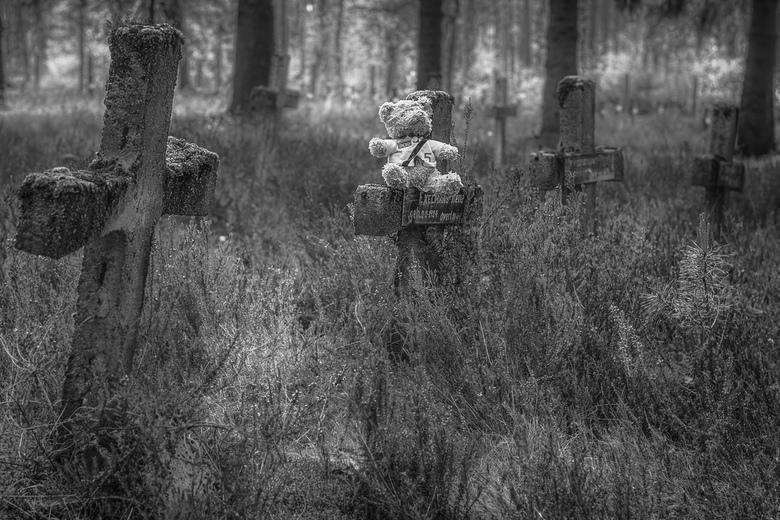 Teddybeer - Rekem, België