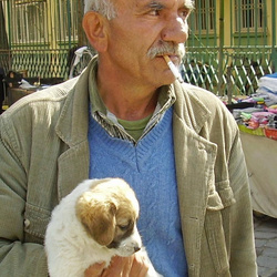 Man and his puppy