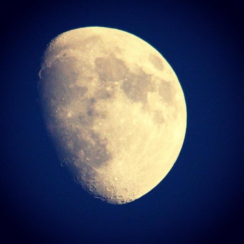 Maanlicht - Een prachtige bijna volle maan straalt boven kudelstaart