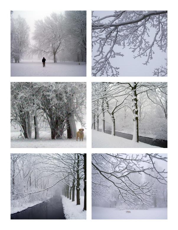 een witte wereld -