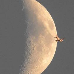 Ondergaande zon belicht vliegtuig in het zicht van de maan.