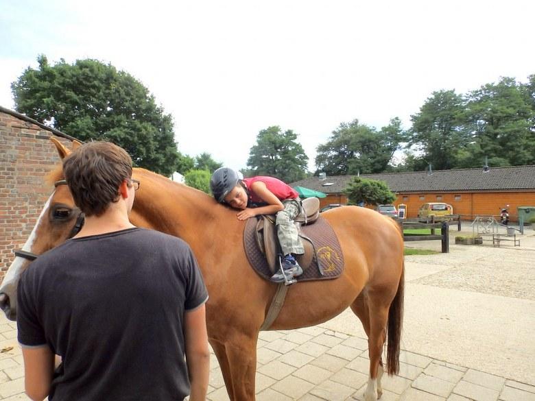Mag ik nou het paardje mee naar huis nemen? -