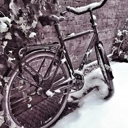 Te koud om te fietsen