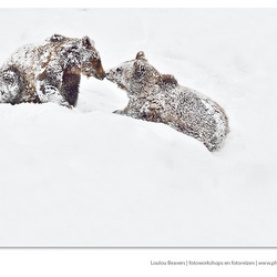 Inuit style