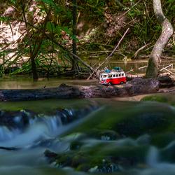 Bus in het oerwoud 2