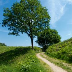 Looppad De Huneschans-Landgoed Duno