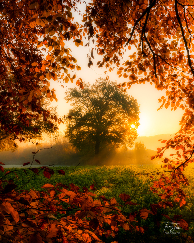 Framed by nature -