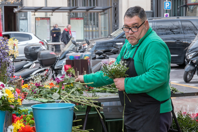 De bloemenman -