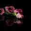 Bloemen iets lichter