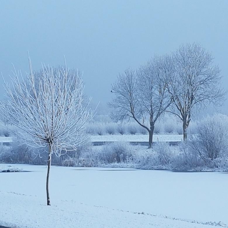 Winterwonderland Moordrecht