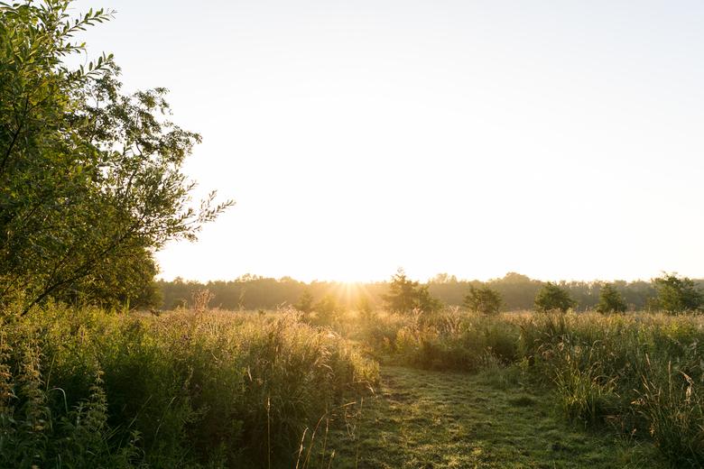 Vroege morgen - Ochtend zon op de Kaai.