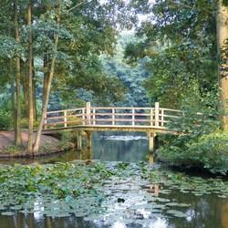 Monet in het park
