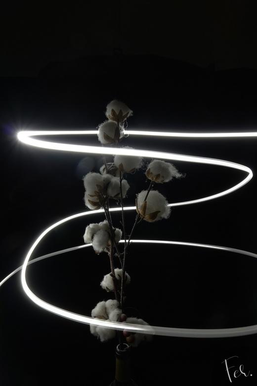 Katoen en licht -