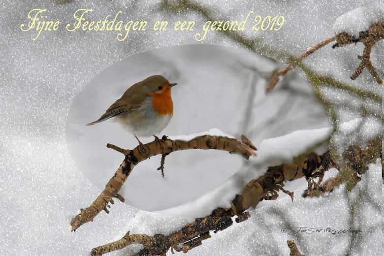 Kerstkaart - ....en Zoomers, bedankt voor alle fijne en leerzame reacties op mijn uploads afgelopen jaar.<br /> Groeten Jan