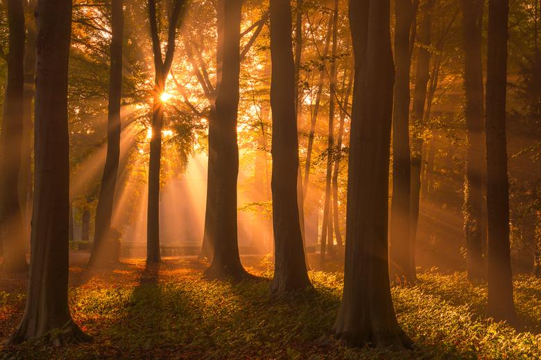 Ik Hou van Herfst