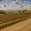 Limburg landschap