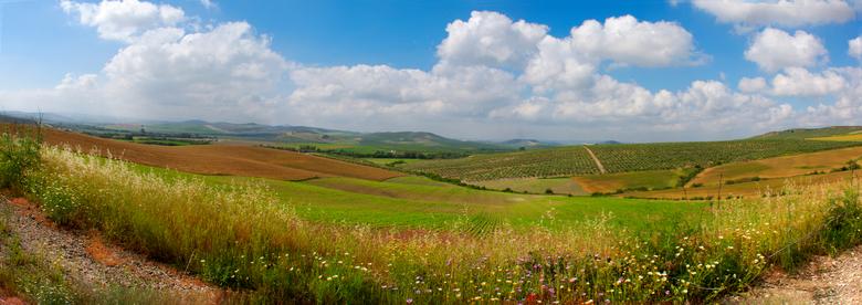 pano olijfbomenlandschap - Dag 26.<br /> <br /> Na weer een heuvel is het landschap weer anders, meer en meer wordt het landschap gevuld met heuvels