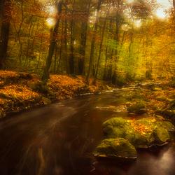 herfstkleuren bij de Hoegne