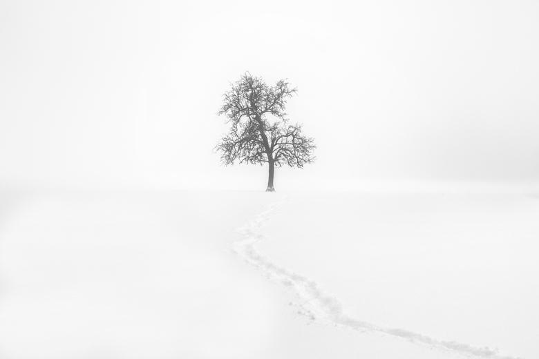 De eenzame weg
