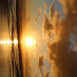 zonsopkomst Terschelling