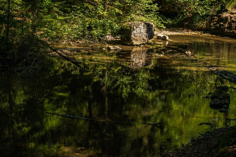 Reflectie. - Bos in Frankrijk.