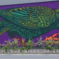 Street -Art (2).