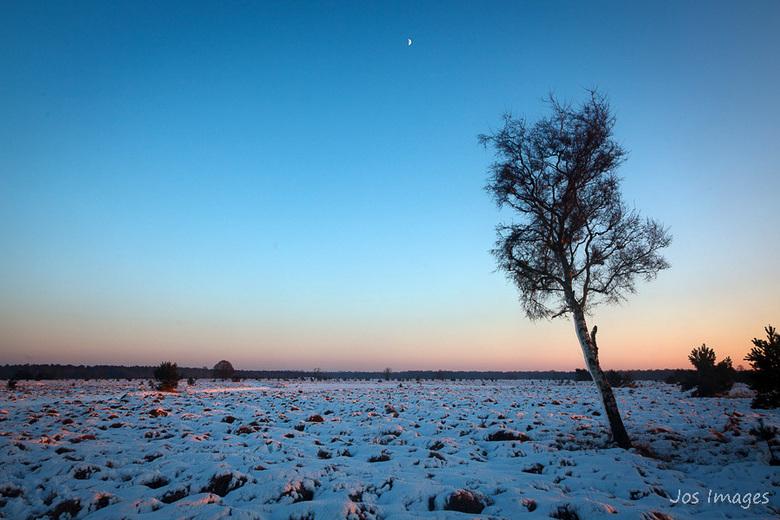 Winter - Zoals zovelen heb ook ik me gisteren goed vermaakt in het winterse landschap.<br /> Een hele dag tussen Oisterwijk en Boxtel gelopen totdat