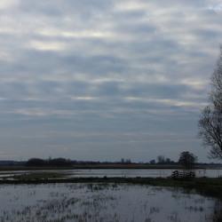 Rijperkerkster-polder