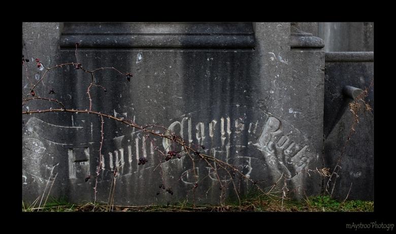 graveyard 3 - kerkhof gent brugge