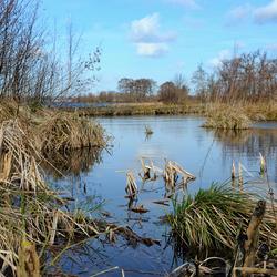 WaterLandschap Reeuwijk