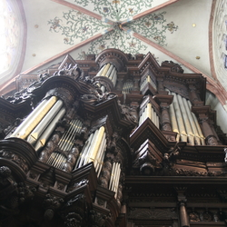 kathedraal Den Bosch