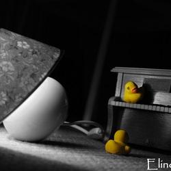 Ducks rule!