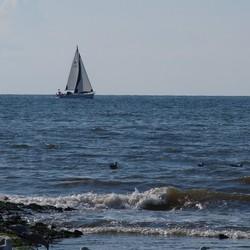 sail  op de \noordzee