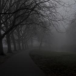 Het pad in de mist, maar waarheen?