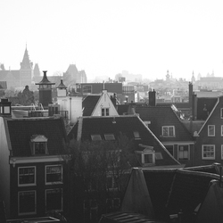 Rooftops | Amsterdam