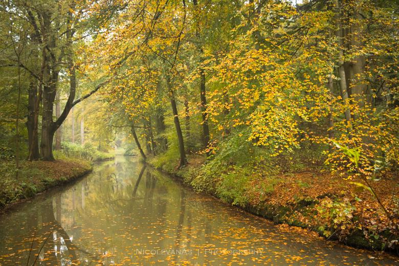 Autumn sfeer 2. - Landgoed Elswout is zoveel te beleven.  Foto is van vorig jaar herfst.  Nu staat het er nog niet zo bij, dat zal niet lang meer dure