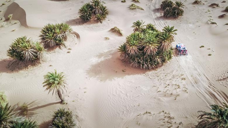 Peter Erren door de palmbomen - Tegen het einde va de Morocco Desert Challenge staan we net buiten Merzouga aan de rand van een gebied met veel plambo