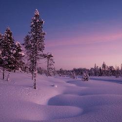 The Wonders of Frozen Lapland