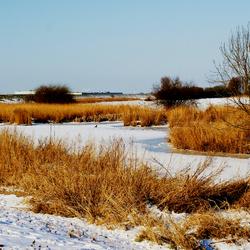 winter 9