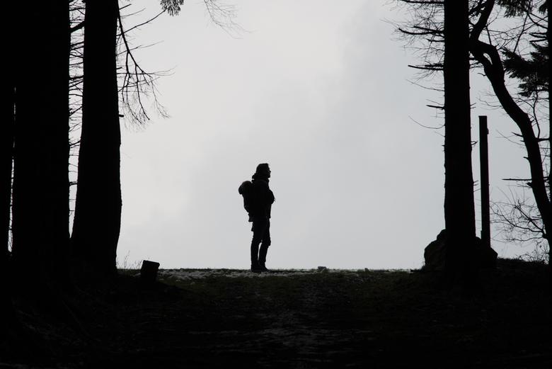 Walking in winterwonderland