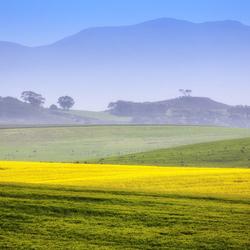 Zuid-Afrika 55