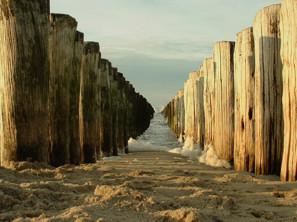 zee hout in knokke - doorkijk naar de schuimende zee in Knokke