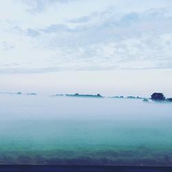 Ochtend Mist