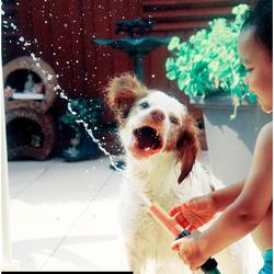 Pure water fun!