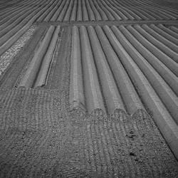 2014 Willemstad dsc 2186.jpg