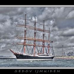 Sedov Sail 2010