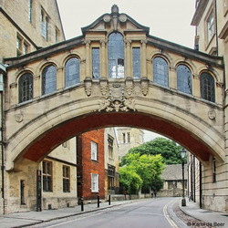 Oxford 20