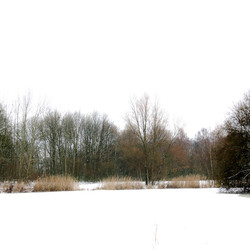 Sneeuwvijver
